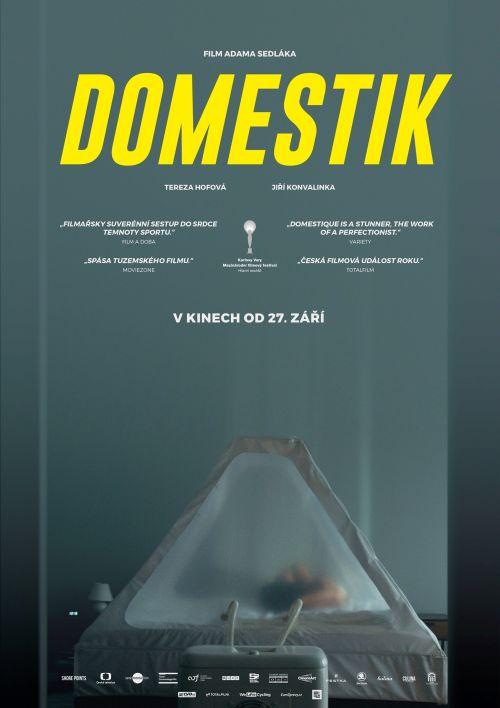 Domestik